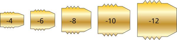 identification charts male an size chart
